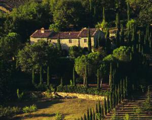 11-itinerari-per-vivere-la-campagna-toscana-2-300x238 11 itinerari per vivere la campagna toscana